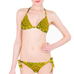 Yellow Green Abstract Wheel Of Fire Bikini