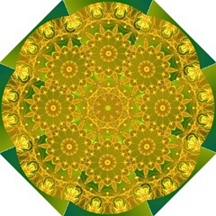 Yellow Green Abstract Wheel Of Fire  Hook Handle Umbrella (Large)