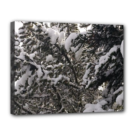 Snowy Trees Canvas 14  x 11  (Framed)