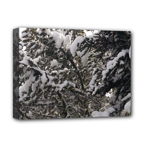 Snowy Trees Deluxe Canvas 16  x 12  (Framed)