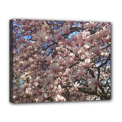 Sakura Canvas 14  x 11  (Framed)