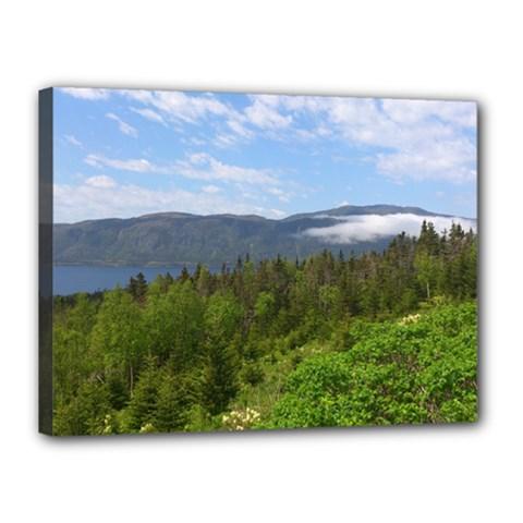 Newfoundland Canvas 16  X 12  (framed)