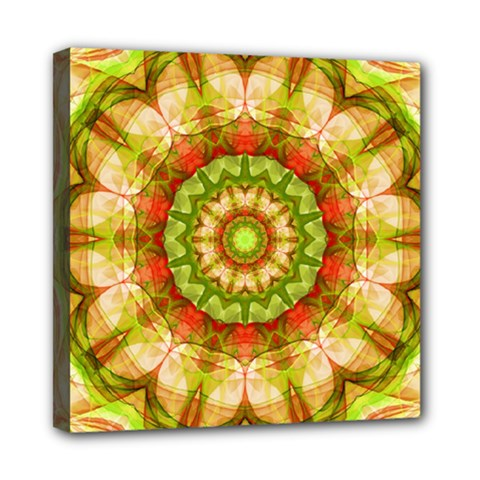 Red Green Apples Mandala Mini Canvas 8  x 8  (Framed)