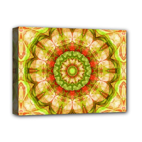 Red Green Apples Mandala Deluxe Canvas 16  x 12  (Framed)