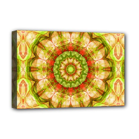 Red Green Apples Mandala Deluxe Canvas 18  X 12  (framed)