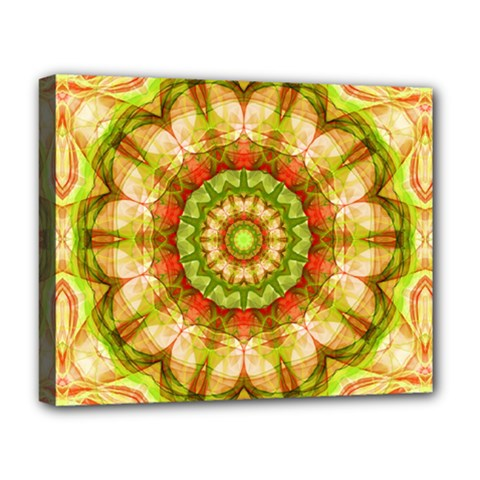 Red Green Apples Mandala Deluxe Canvas 20  x 16  (Framed)