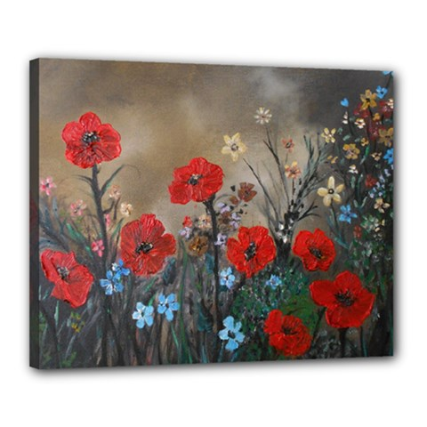 Poppy Garden Canvas 20  x 16  (Framed)