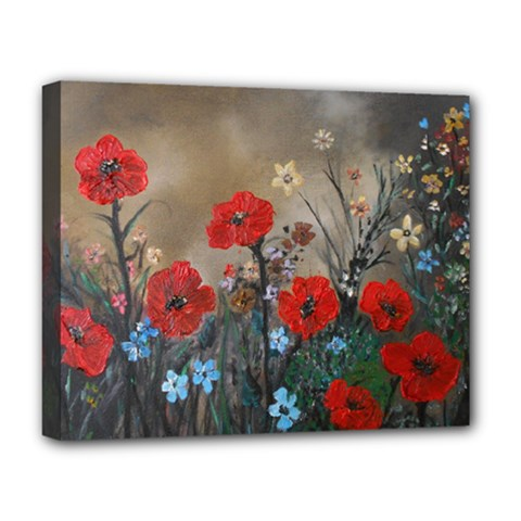 Poppy Garden Deluxe Canvas 20  x 16  (Framed)