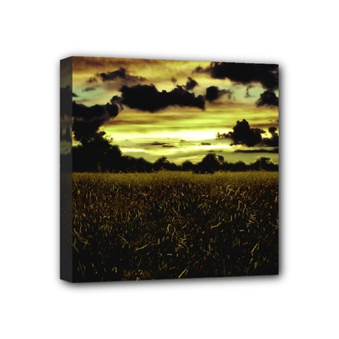 Dark Meadow Landscape  Mini Canvas 4  X 4  (framed)