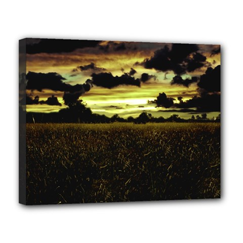 Dark Meadow Landscape  Canvas 14  x 11  (Framed)