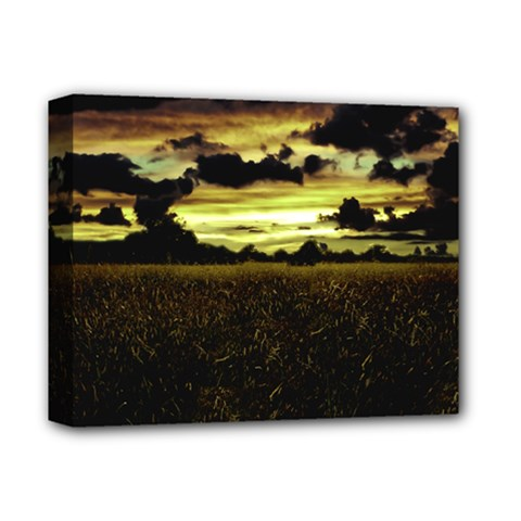 Dark Meadow Landscape  Deluxe Canvas 14  X 11  (framed)