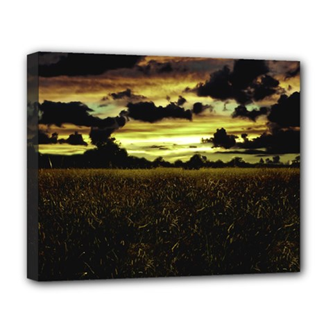 Dark Meadow Landscape  Deluxe Canvas 20  x 16  (Framed)