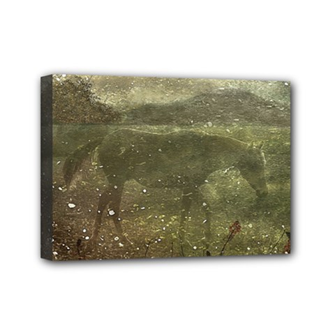 Flora And Fauna Dreamy Collage Mini Canvas 7  x 5  (Framed)
