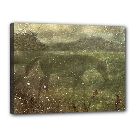 Flora And Fauna Dreamy Collage Canvas 16  x 12  (Framed)