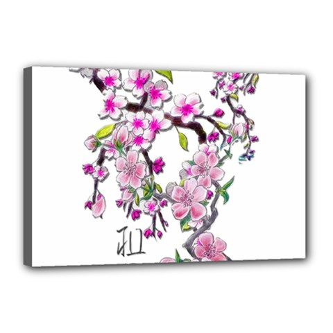 Cherry Bloom Spring Canvas 18  x 12  (Framed)
