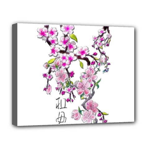 Cherry Bloom Spring Deluxe Canvas 20  X 16  (framed)