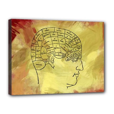 Brain Map Canvas 16  x 12  (Framed)
