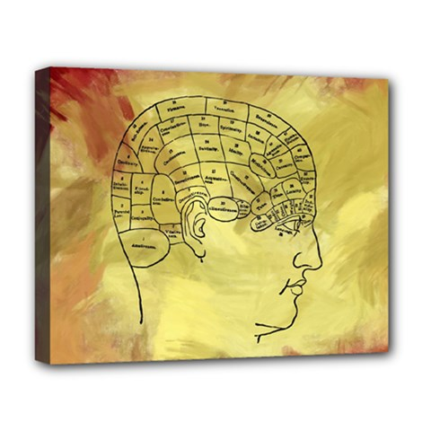 Brain Map Deluxe Canvas 20  x 16  (Framed)