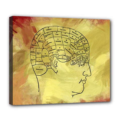 Brain Map Deluxe Canvas 24  x 20  (Framed)