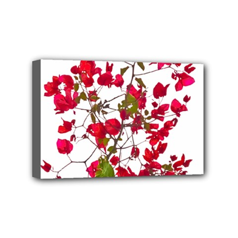 Red Petals Mini Canvas 6  x 4  (Framed)