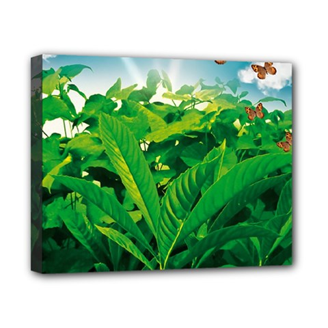 Nature Day Canvas 10  X 8  (framed)