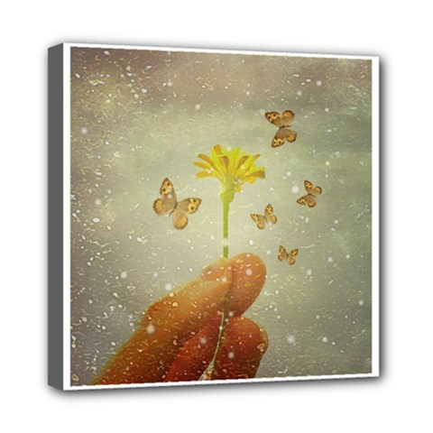 Butterflies Charmer Mini Canvas 8  X 8  (framed)