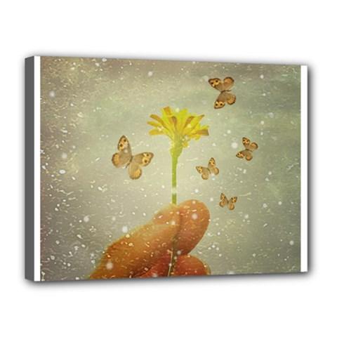 Butterflies Charmer Canvas 16  x 12  (Framed)