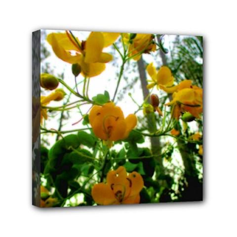 Yellow Flowers Mini Canvas 6  x 6  (Framed)