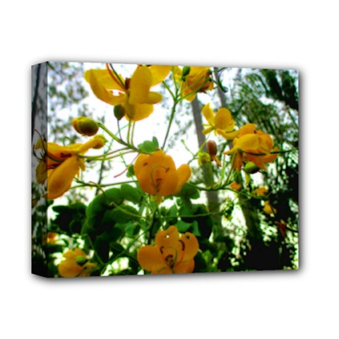 Yellow Flowers Deluxe Canvas 14  X 11  (framed)