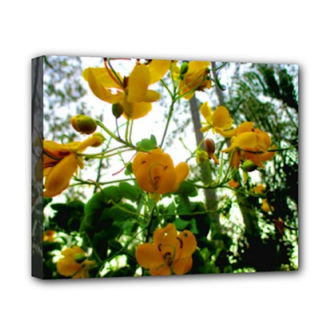 Yellow Flowers Canvas 10  x 8  (Framed)