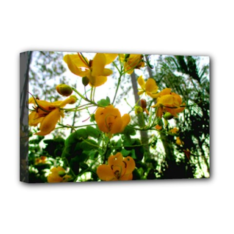 Yellow Flowers Deluxe Canvas 18  x 12  (Framed)