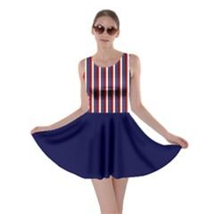 USA Patriot Stripes Skater Dress