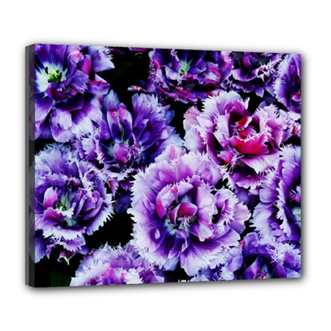 Purple Wildflowers Of Hope Deluxe Canvas 24  X 20  (framed)