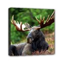 Majestic Moose Mini Canvas 6  x 6  (Framed) View1
