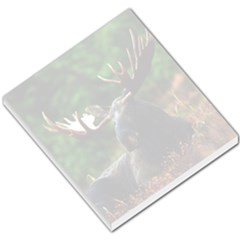 Majestic Moose Small Memo Pad