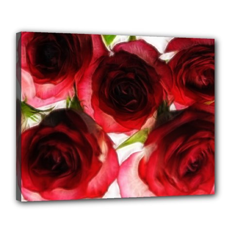Pink And Red Roses On White Canvas 20  X 16  (framed)
