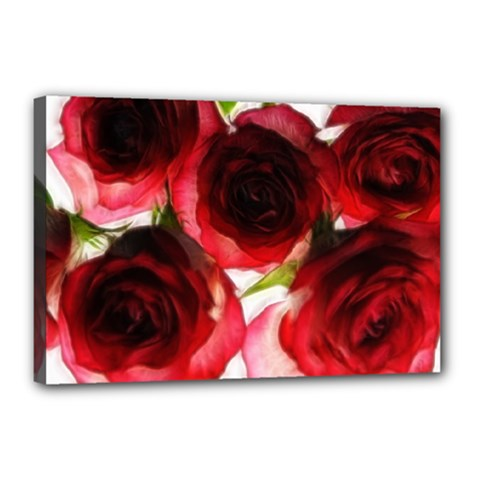 Pink and Red Roses on White Canvas 18  x 12  (Framed)