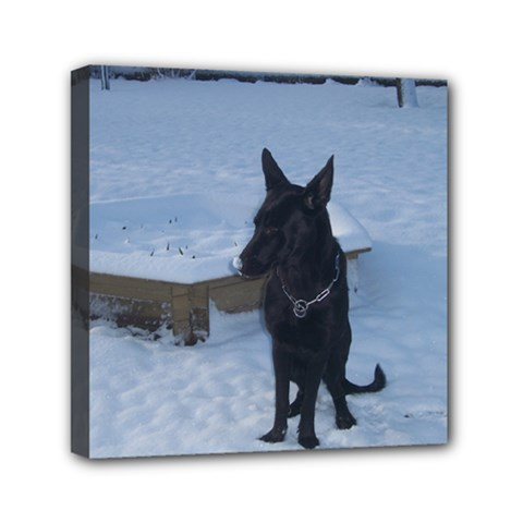 Snowy Gsd Mini Canvas 6  X 6  (framed)