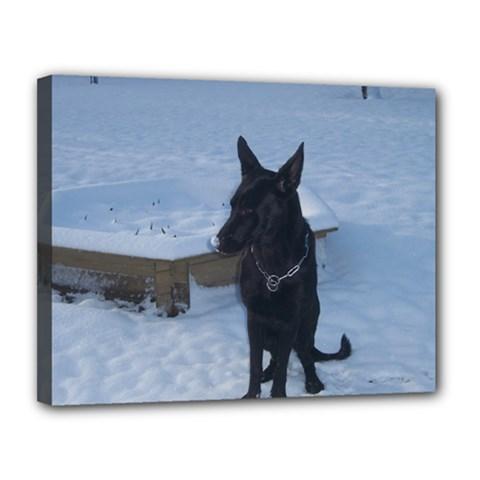 Snowy Gsd Canvas 14  x 11  (Framed)