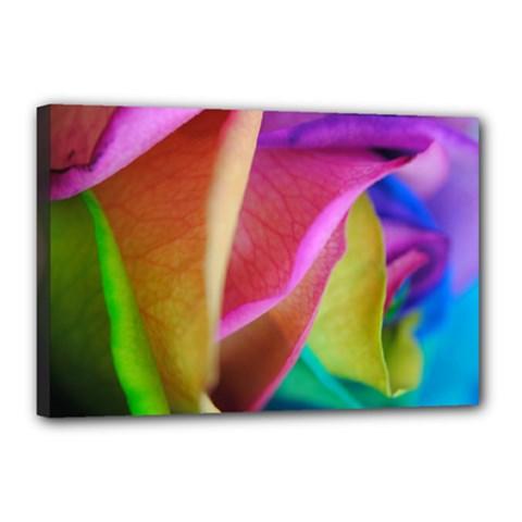 Rainbow Roses 16 Canvas 18  x 12  (Framed)