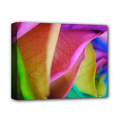 Rainbow Roses 16 Deluxe Canvas 14  X 11  (framed)