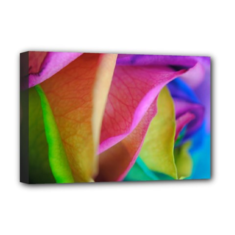 Rainbow Roses 16 Deluxe Canvas 18  X 12  (framed)