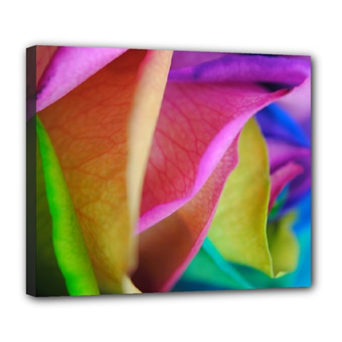 Rainbow Roses 16 Deluxe Canvas 24  X 20  (framed)