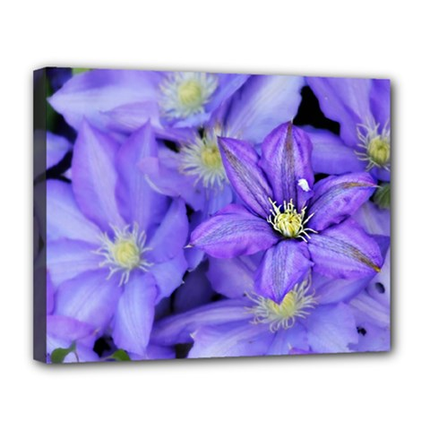 Purple Wildflowers For Fms Canvas 14  x 11  (Framed)
