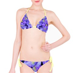 Purple Wildflowers For Fms Bikini