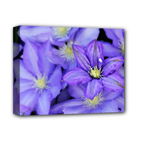 Purple Wildflowers For Fms Deluxe Canvas 14  X 11  (framed)