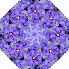 Purple Wildflowers For Fms Hook Handle Umbrella (large)