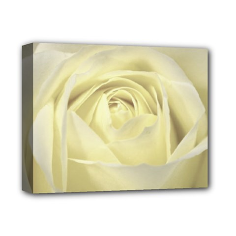 Cream Rose Deluxe Canvas 14  X 11  (framed)