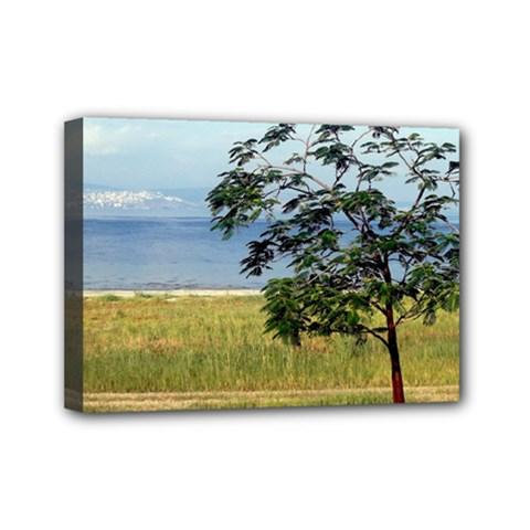 Sea Of Galilee Mini Canvas 7  x 5  (Framed)