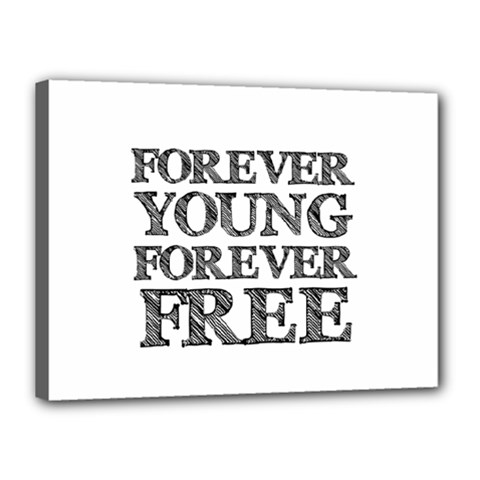 Forever Young Canvas 16  X 12  (framed)